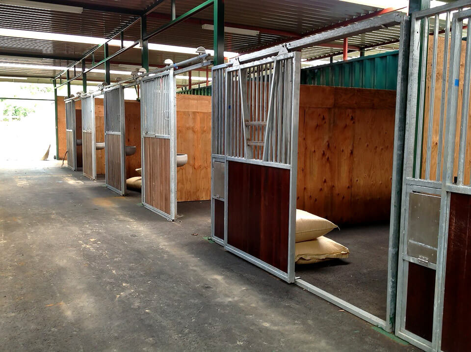 コンテナを使った馬の厩舎内観 馬が入るスペース