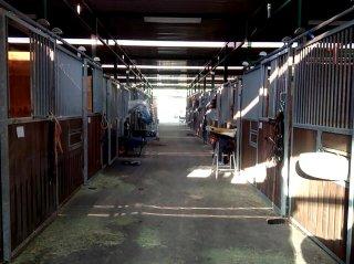 コンテナを使った馬の厩舎 通し