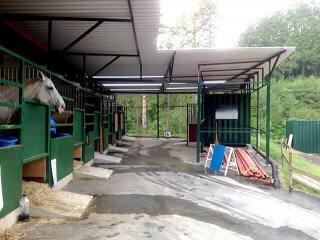 増築されたコンテナの馬の厩舎2