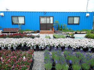 お花に囲まれた事務所型コンテナハウス(40フィートコンテナ使用)正面からの写真