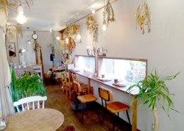 カフェ&植物販売の店舗型コンテナハウス 店内の様子1