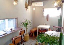 カフェ&植物販売の店舗型コンテナハウス 店内の様子3