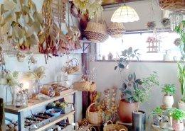カフェ&植物販売の店舗型コンテナハウス 店内の様子5